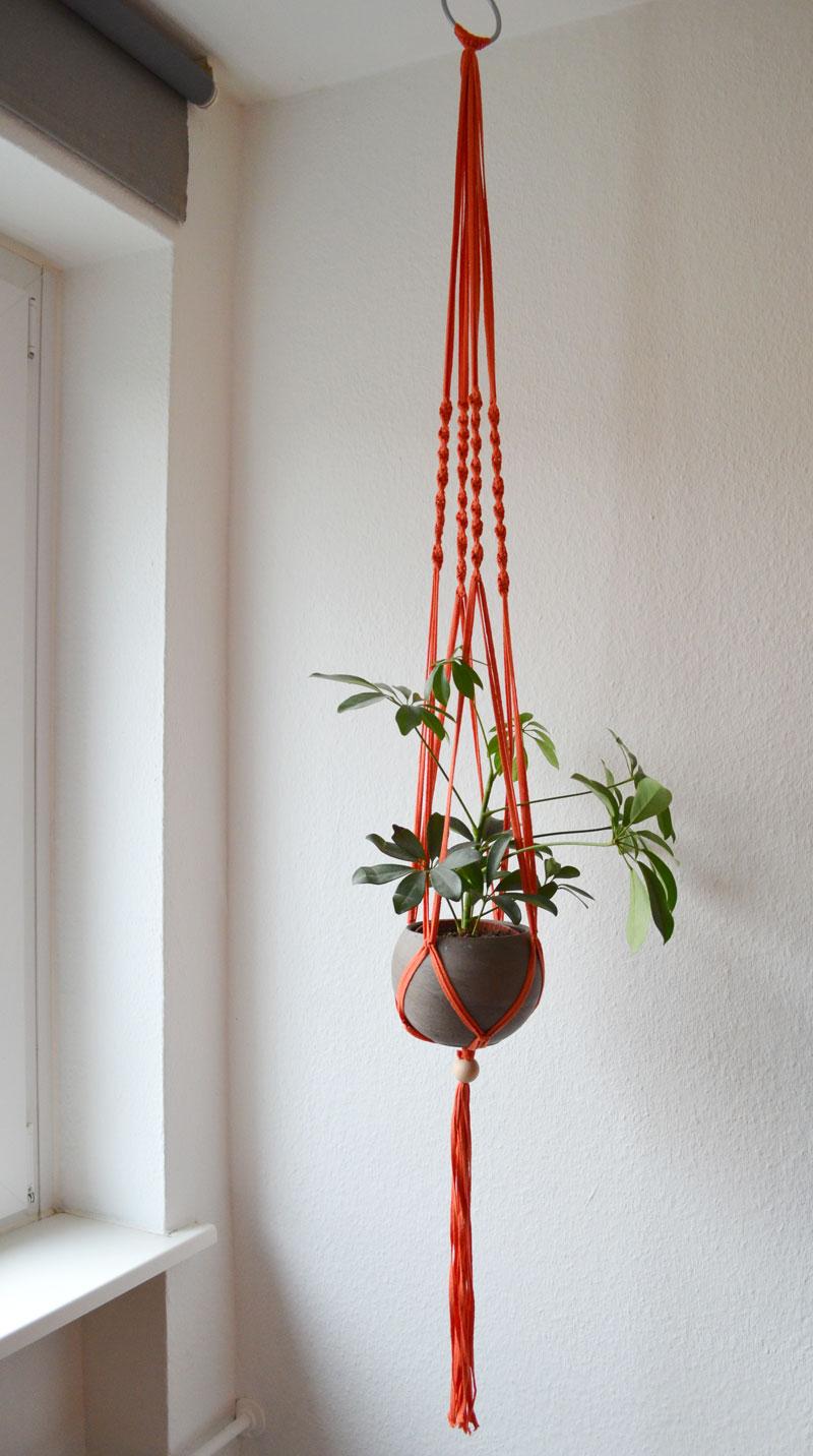 lieblingsfarbe apricot neue diy makramee blumenampel. Black Bedroom Furniture Sets. Home Design Ideas